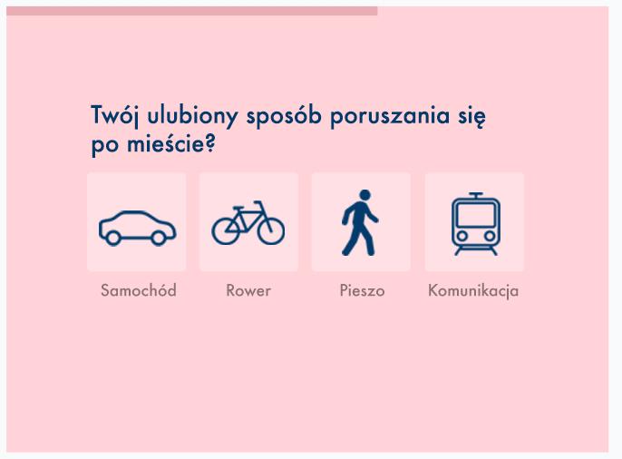 Kwestionariusz ankiety - przykład